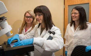 Day lab paper describes new approach to enhance chemotherapy with nanotechnology
