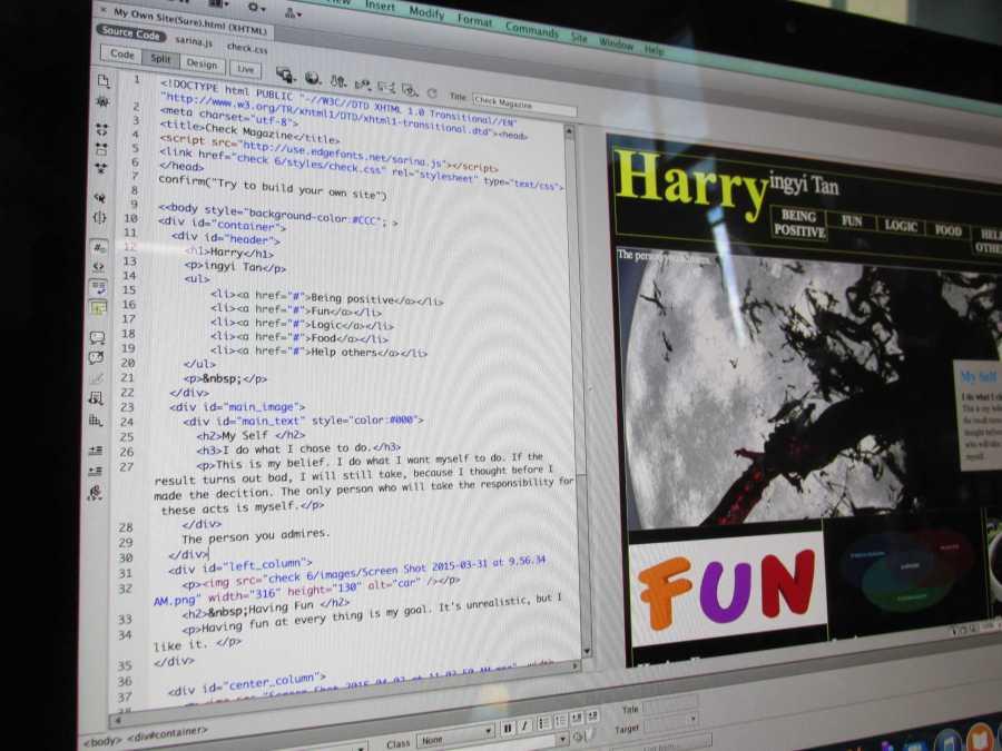 Harry+Tan+%2718+presents+his+coding.