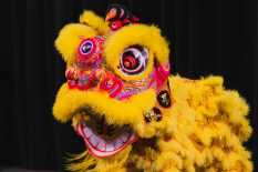 """A Chinese lion puppet performs a """"Lion Dance""""."""
