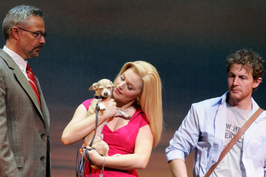 A scene from the play version of the Hollywood film, Legally Blond.