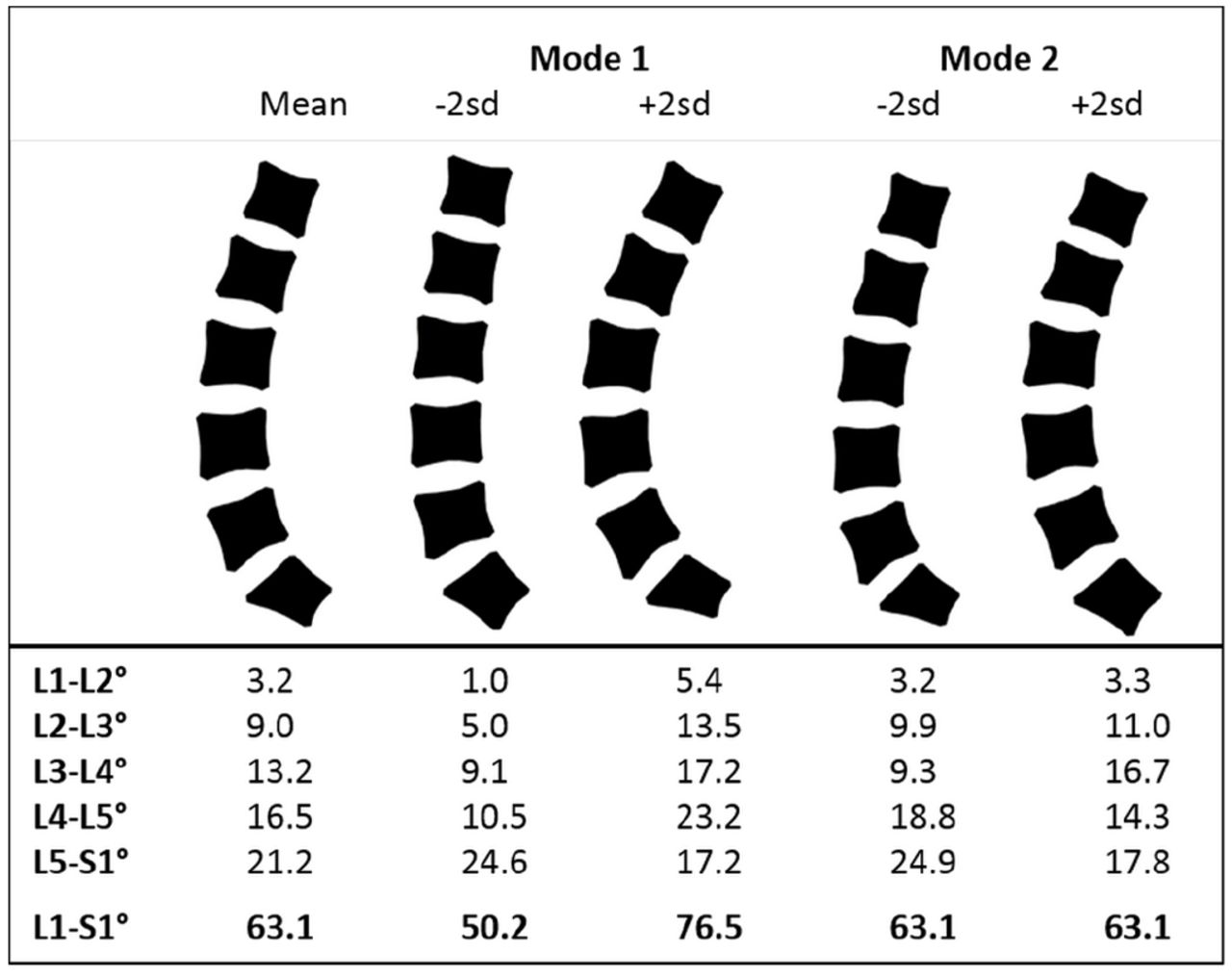 Variation In Lifting Kinematics Related To Individual