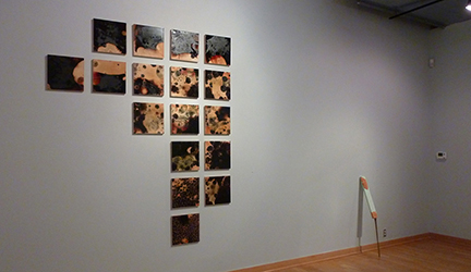 Maryland Art Place - Juried Regional 2013 - Selin Balci - Ben Piwowar - Thumb