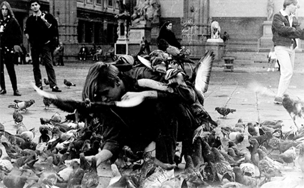 1987_pigeon_action