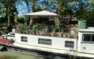 Vegetables in pots on a barge on the Canal du Midi.