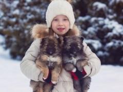 дети с собаками