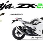 Gosip Motor : Akan Ada All New Kawasaki Ninja 2 Silinder dan Ninja 250cc 4 Silinder!! Kapan Rilis Ya?