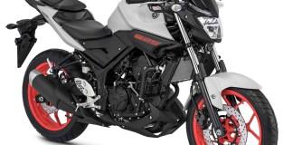 Yamaha MT-25 2018 Grey