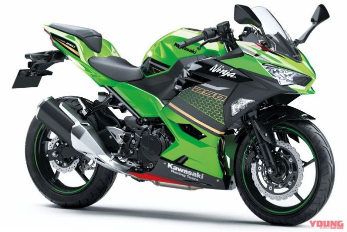 Kawasaki Ninja 250 2020 Metallic Spark Black / Lime Green