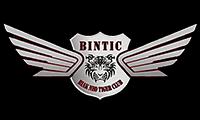 BINTIC Papua
