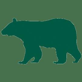 Bear Favicon