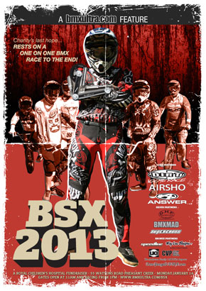 BSX2013