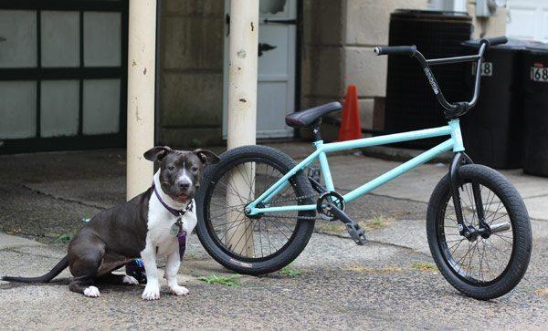 Dan Conway Bike Check