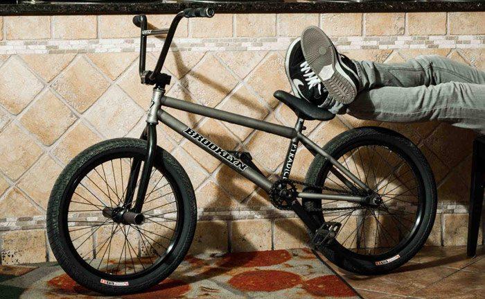 anthony-derosa-bmx-bike-check-animal-bikes-bike