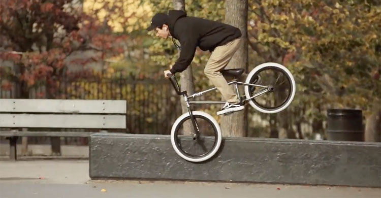 "Animal Bikes – ""FACTS"" – Full Video"