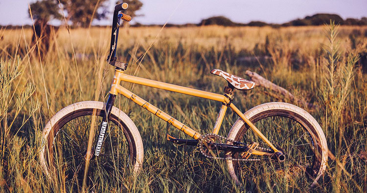 BSD – Reed Stark Safari Bike Check