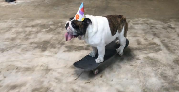 FloriDeah – Jesco Skateboards On His Birthday