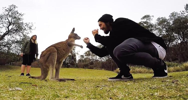 Jonas Bader – Australia Trip
