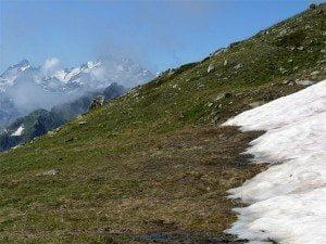 Ориентирование зимой: Определение сторон горизонта по снегу