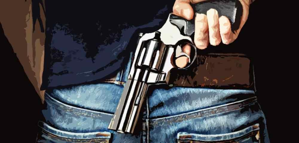 Гражданское огнестрельное оружие - перевод закона на русский - Last Day Club