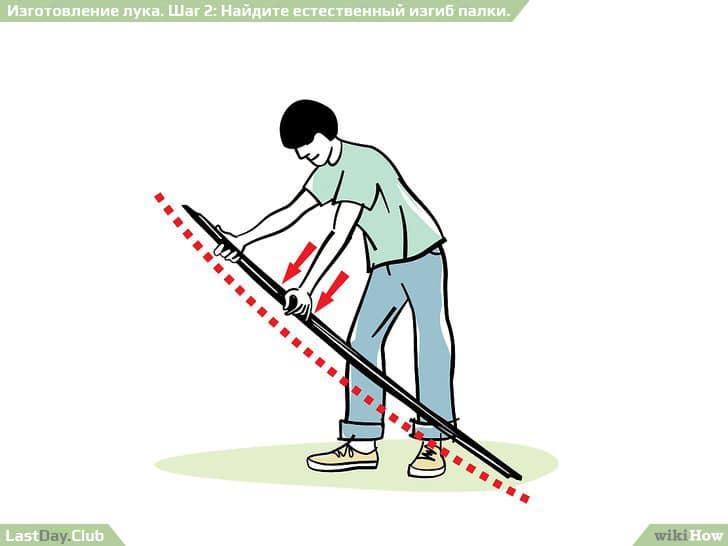 2 - Найдите естественный изгиб палки - Как сделать лук своими руками - Руководство по выживанию