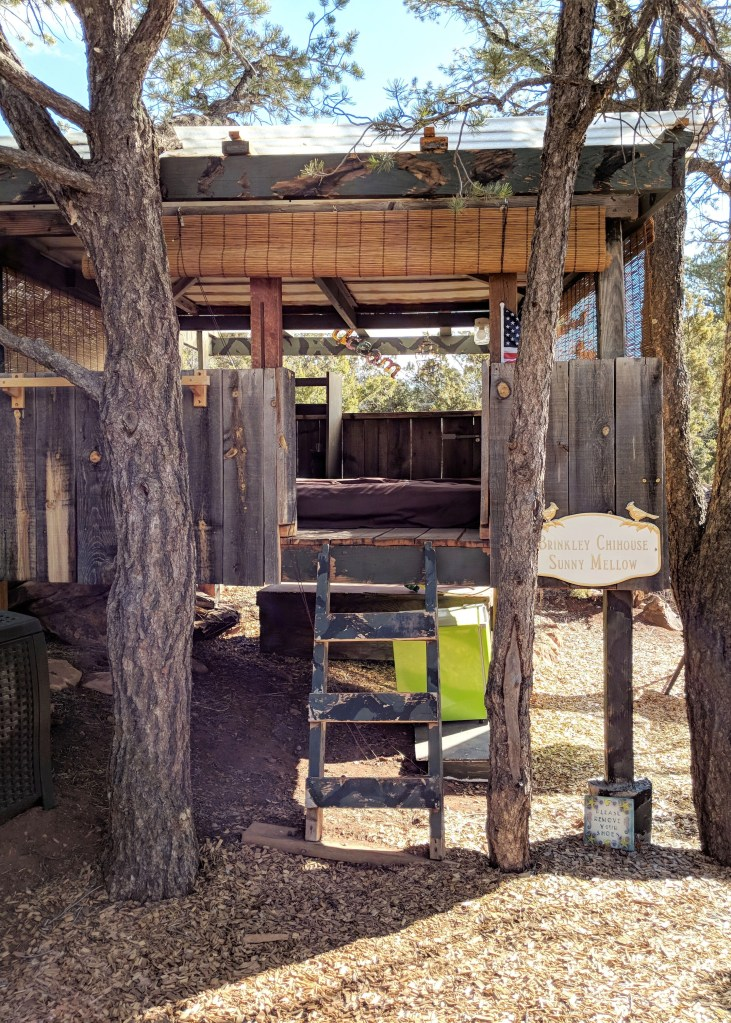 airbnb treehouse in tijeras new mexico