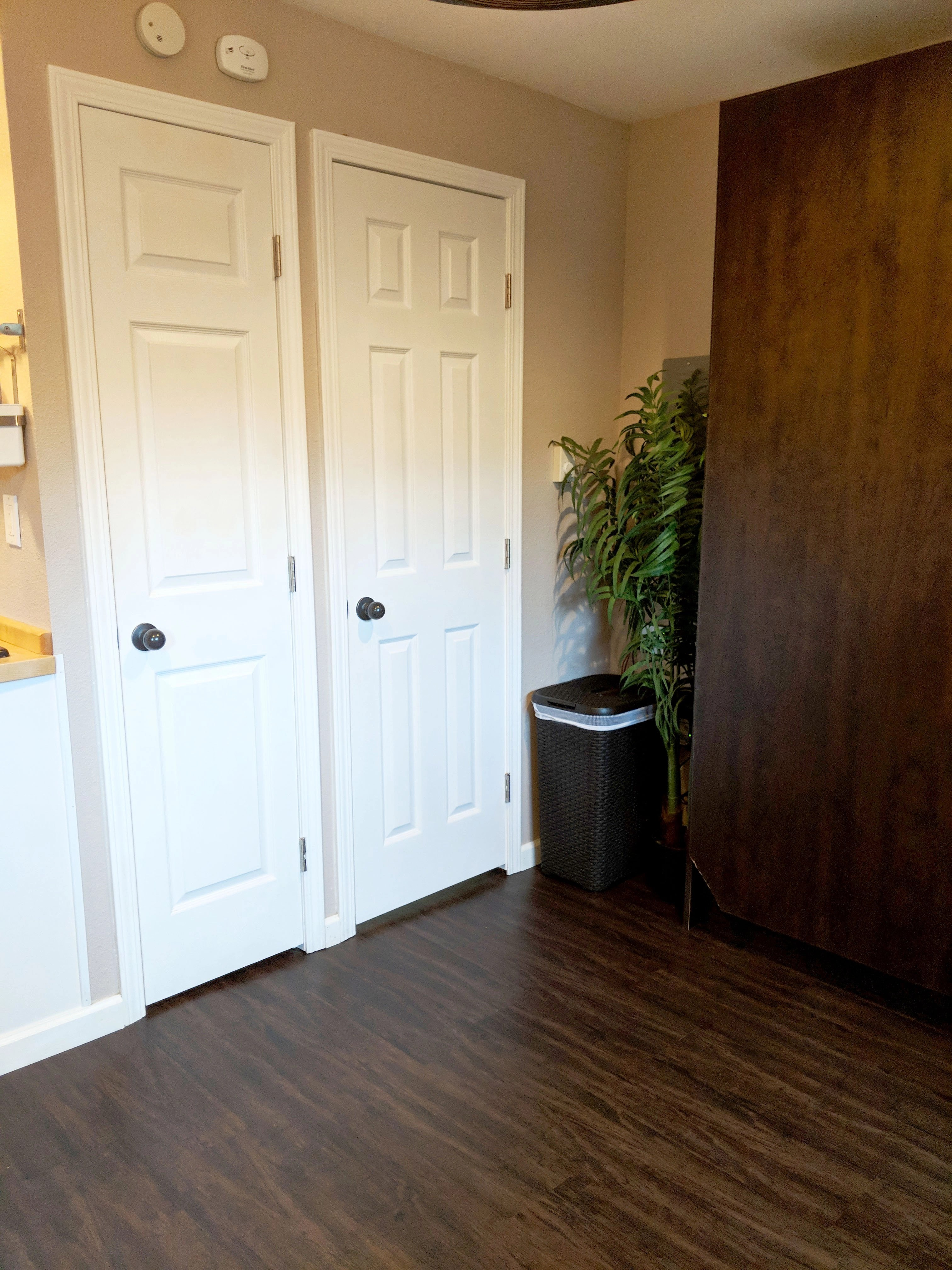 two modern doors and a murphy bed