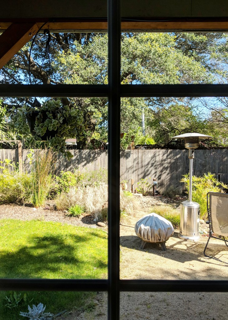 view out window to sunny backyard
