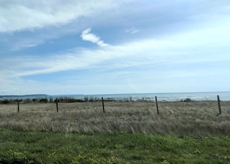 field overlooking the ocean on California Highway 1