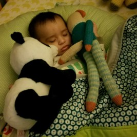 He sleeps better with his buddies.
