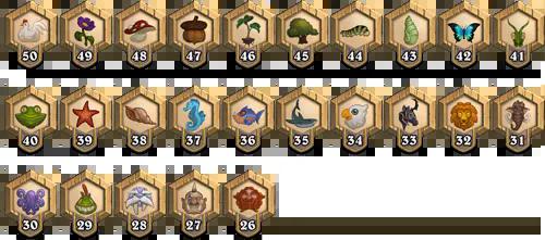 New Player Ranks (50-26)