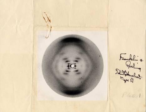 La foto de Rosalind Franklin por la que suspiraban Watson, Crick y Pauling