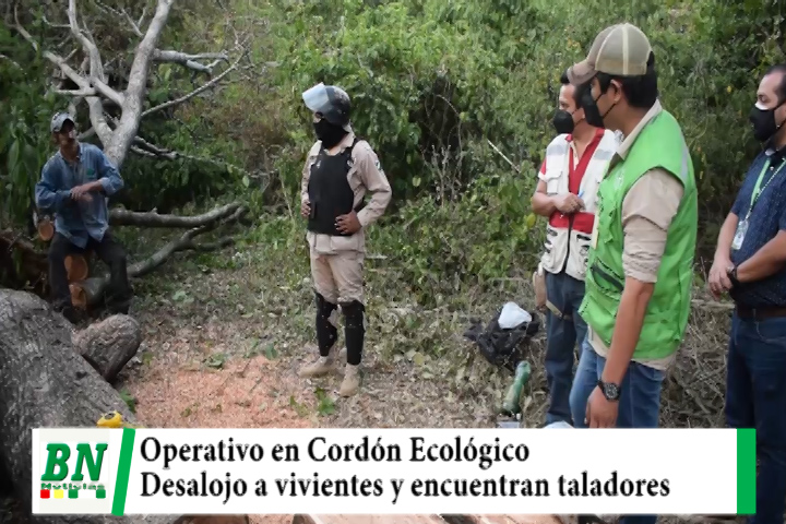 Operativo en Cordón Ecológico contra vivientes y encuentran a taladores de árboles