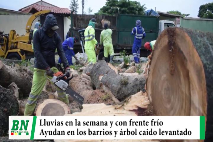 Lluvias seguirán en la semana con ingreso de frente frio, DEM ayuda en barrios y levantan árbol