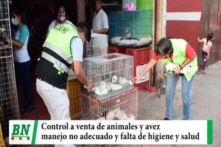 Municipio realizó operativo de control a venta de animales y avez silvestres y encuentra mal manejo