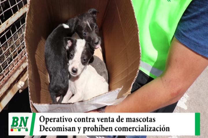 Operativo contra venta de animales encuentra a mascotas en malas condiciones y las decomisa