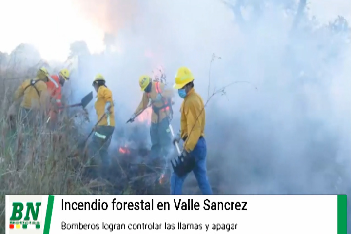 Bomberos lograron controlar y apagar un incendio forestal en Valle Sanchez