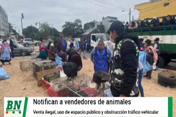 Notifican a vendedores de animales en vía pública y sancionarán si permanecen en la zona