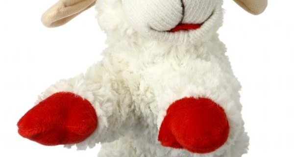 New Product 2015: Multipet Lamb Chop 5in