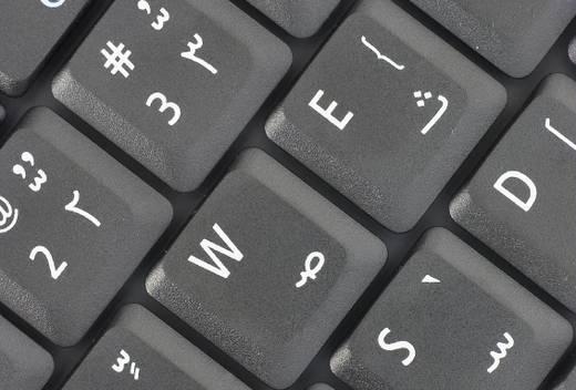 القارئ العربي على الإنترنت