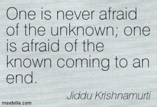 Quotation_Krishnamurti (24)