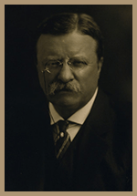 Teddy Roosevelt, Fail While Daring Greatly