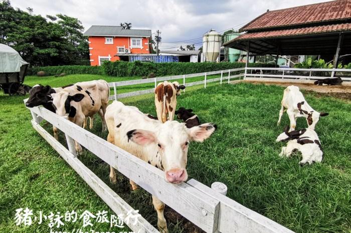 嘉義。中埔》綠盈牧場。讓小孩盡情奔跑的綠地