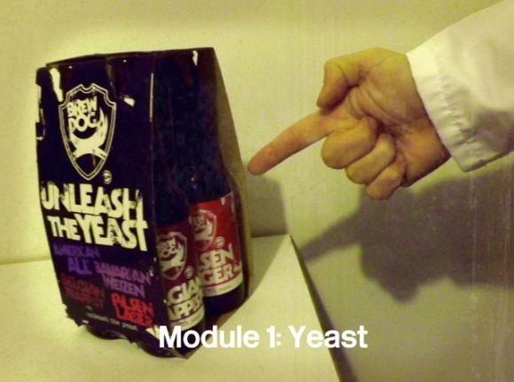 Module 1: Yeast