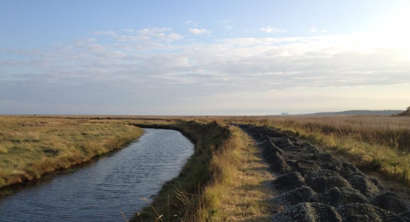 Flat marshlands in Suffolk.