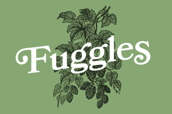 Fuggles illustration.