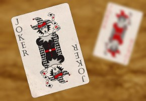 Ternyata Joker Berguna! 5 Varian Permainan yang Pakai Kartu Joker