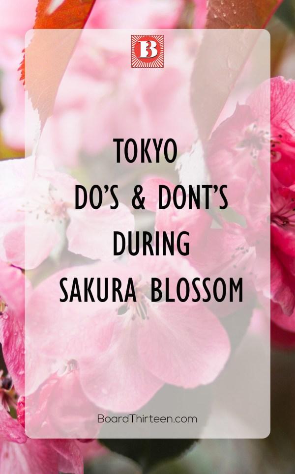 Sakura blossom Tokyo Japan