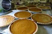 bh-pumpkin-pies