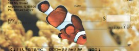 check with clown fish