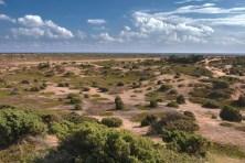 Anholt desert summer Denmark island